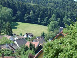Black Forest Retrieve in Badenweiler-Schweighof - Badenweiler vacation rentals