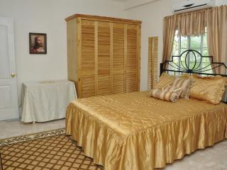 Welcome to Windmill Villa!  Your  home away from home. - Carriacou vacation rentals