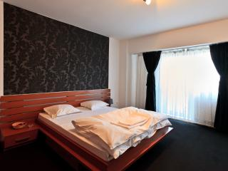 Central Accommodation Black Rose - Bucharest vacation rentals