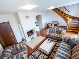 Park View Apartment WILI TATRY - Strelniky vacation rentals