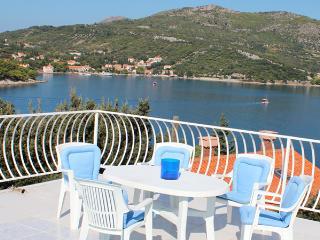 Casa Amica  Štikovica, Zaton bay  with sea view - Zaton vacation rentals