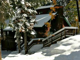Perfect All seasons cabin in North Lake Tahoe - Tahoe Vista vacation rentals