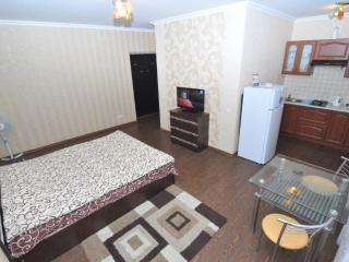 Great apartment near Central Park of Chisinau - Bucovat vacation rentals