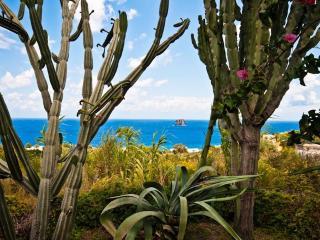 beauty privacy and nature at CASA DANI in Stromboli - Stromboli vacation rentals
