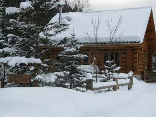Le Malufo Luxurious Scandinavian Scribe Log Chalet - Mont Tremblant vacation rentals