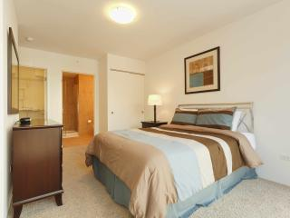 Michigan Ave Modern 1 Bedroom--Close to Everything - Chicago vacation rentals
