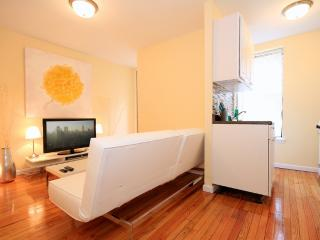 Cozy and Sun Filled Upper East Side 1 Bedroom - New York City vacation rentals