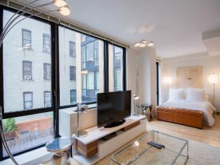 Gorgeous Modern Studio Condo by Central Park - New York City vacation rentals