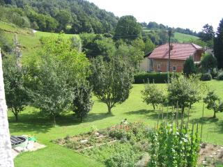 Family house in Fantastic Location - Maribor vacation rentals