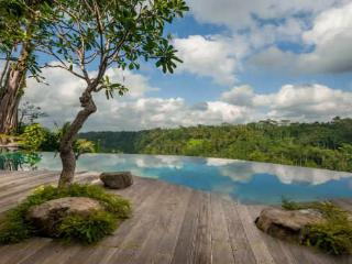 Ubud Luxury 4 bdrm Villa & Retreat - Hartland Esta - Ubud vacation rentals