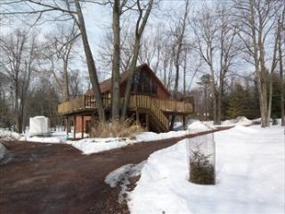 0 121394 - Poconos vacation rentals
