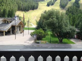 Ski/Bike Out the Front Door! 2 BR, 2 BA w/AC - Ketchum vacation rentals
