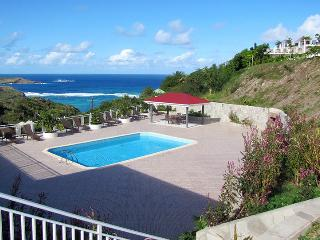 Perfect Villa with Internet Access and Dishwasher - Toiny vacation rentals