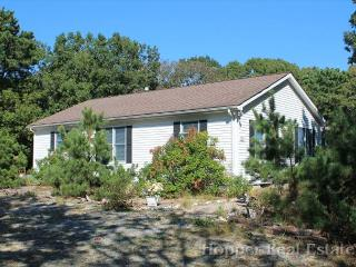 4 bedroom Cottage with Deck in North Eastham - North Eastham vacation rentals