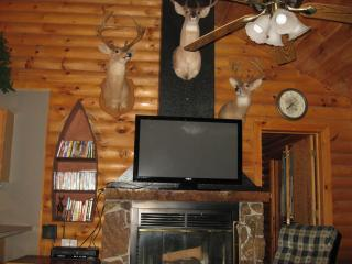 Rustic Log Cabin,2 jacuzzis,Private Lake,1m to SDC - Branson vacation rentals