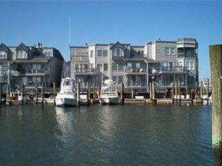 Harbor Fantasy 43465 - Image 1 - Cape May - rentals