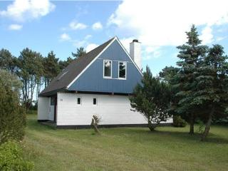 44851-Holiday house Elsegaarde - Elsegaarde Strand vacation rentals