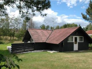 Cozy Villa with Television and DVD Player in Ebeltoft - Ebeltoft vacation rentals