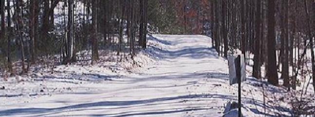 Justa Cabin | Blue Ridge Mountains, Blairsville GA - Blairsville vacation rentals