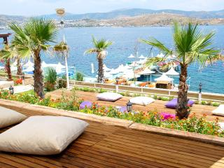 Lovely Condo with A/C and Satellite Or Cable TV - Bodrum vacation rentals