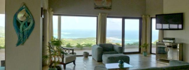 Designer Home with Exquisite Views Inside and Out - Image 1 - Oyster Pond - rentals