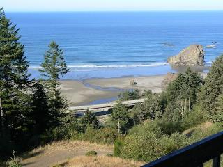 SPECTACULAR VIEW! PRIVATE BEACH ACCESS! 12 ACRES! - Gold Beach vacation rentals