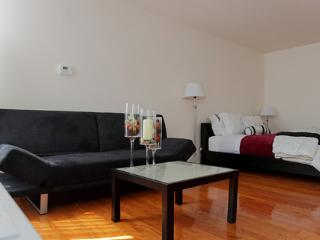 Spacious Studio Boston-Longwood - Maynard vacation rentals