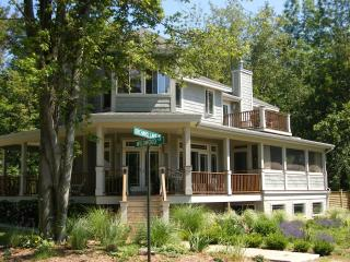 Perfect 2 bedroom House in South Haven - South Haven vacation rentals