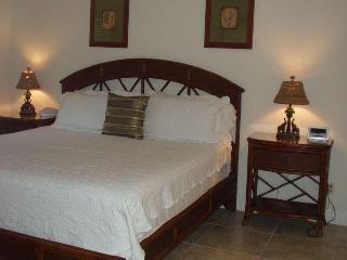 Comfortable Condo with Internet Access and Dishwasher - Naples vacation rentals