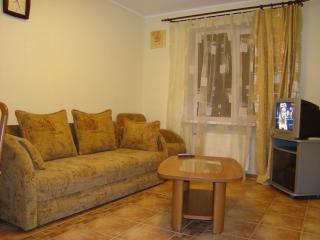 apartment near the stadium Donbass Arena - Donetsk vacation rentals
