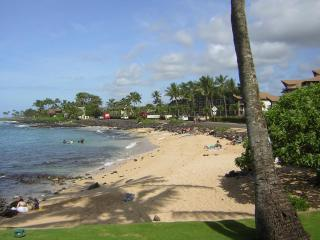 ~*POIPU BEACHSIDE STUDIO/1BD*~ Snorkel, Swim, Surf - Koloa vacation rentals