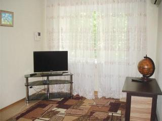 apartment on Pushkin Boulevard - Donetsk vacation rentals