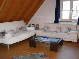 Villingen-Schwenningen; Large apartment, 6 people - Plieningen vacation rentals
