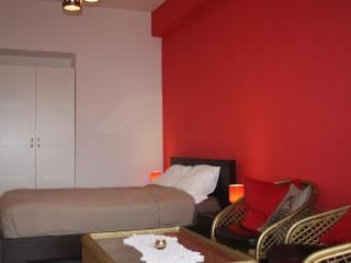 Tlv- king Shlomo Hamelech Apartment - Gedera vacation rentals