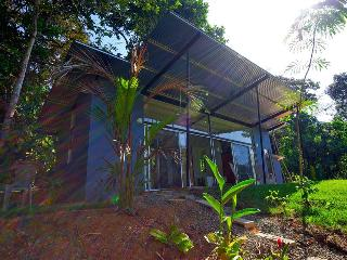 Private 8acre Modern Home w/Pool- The Jungle Villa - Dominical vacation rentals