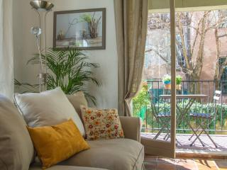 Spacious 1 Bedroom Apartment Parking, Historical - Aix-en-Provence vacation rentals