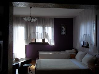 Apartment 1 Bedroom & 2 Bath with Terrace - Kotor vacation rentals