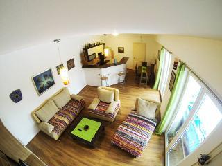 Charming 3 bedroom House in Novi Sad - Novi Sad vacation rentals