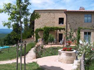 Stunning view on Tuscany hills, swimming pool - Strove vacation rentals