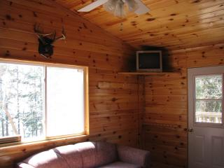 Semi-Outpost Cabin Rentals on Lake Of The Wood's - Sioux Narrows vacation rentals