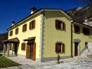 Istrian Villa with swimming pool in Istria,Croatia - Ucka Nature Park vacation rentals