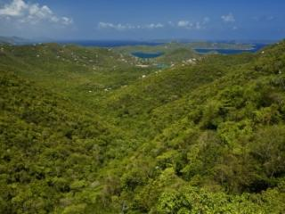 2 Bedroom Hillside Villa with Panoramic View on St. John - Bordeaux Mountain vacation rentals