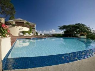 Prestigious 4 Bedroom Mansion with Private Pool on St. Thomas - Flag Hill vacation rentals
