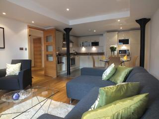 Edinburgh Leith Maritime Bond (parking/ lift ) - Edinburgh vacation rentals