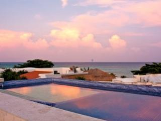 Lovely 5 Bedroom Villa with Private Pool & Deck in PLaya del Carmen - Playa del Carmen vacation rentals