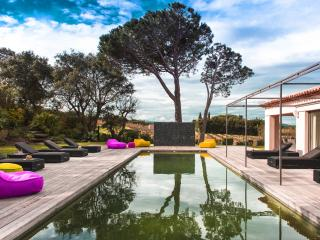 Superb Villa in the vineyards, 6 bedrooms, Saint-Tropez - Saint-Tropez vacation rentals