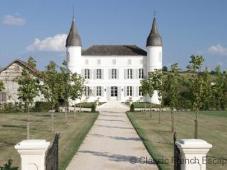 Immaculate Chateau FRMD102 - - Le Temple-sur-Lot vacation rentals