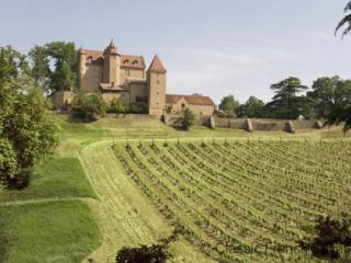Breathtaking Chateau FRMD114 - - Gelos vacation rentals