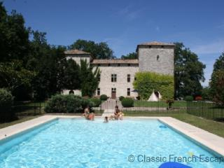 Commanding Medieval Chateau FRMD115 - - Atur vacation rentals