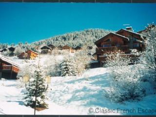 Chalet Bellevue FRMS102 - Les Menuires vacation rentals